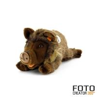 wildschweinpluesch